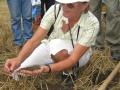Márta Birkás  teaching farmers